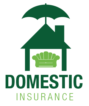 DOMESTIC PACKAGE INSURANCE